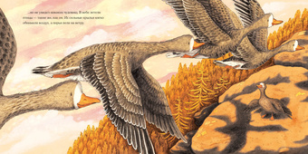 Осень гусенка