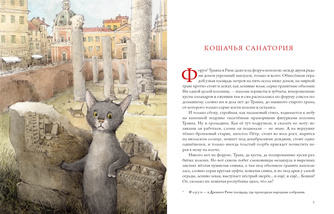 Кошачья санатория