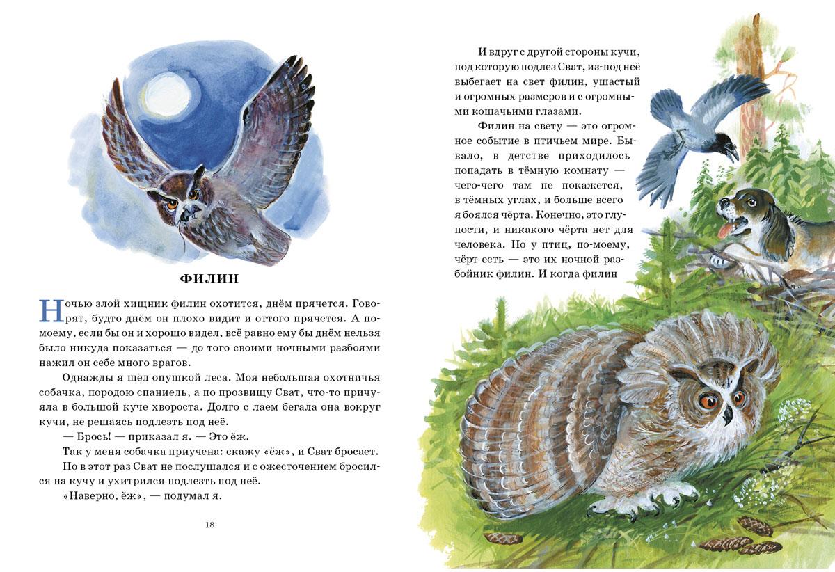 Охота за бабочкой. Сборник рассказов